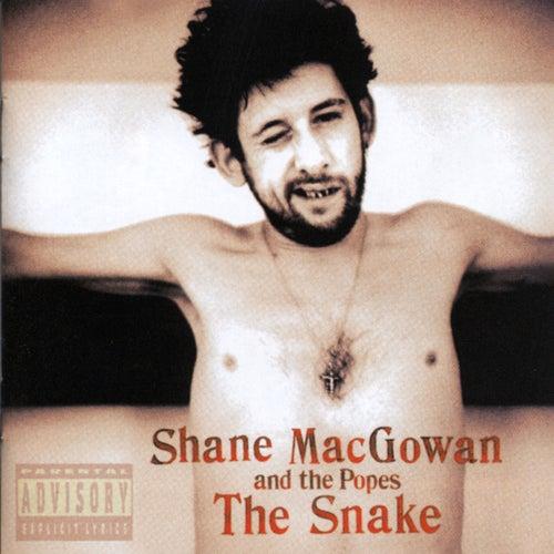 The Snake de Shane MacGowan