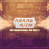 For Professional Use Only 2 by AraabMUZIK