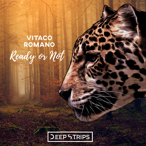 Ready Or Not by Vitaco