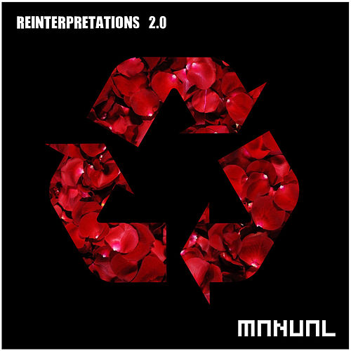 Reinterpretations 2.0 von Various Artists