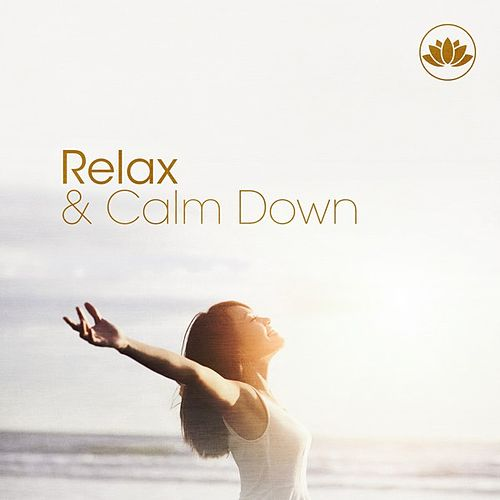 Relax & Calm Down von Various Artists