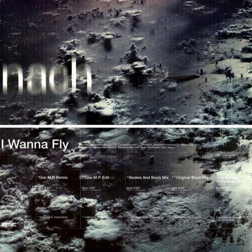 I Wanna Fly by Nach