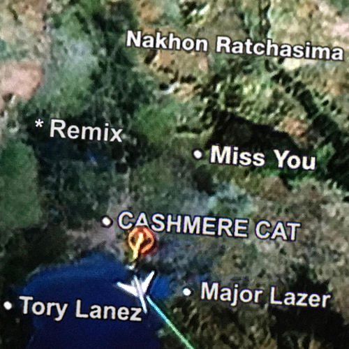 Miss You (Remixes) von Cashmere Cat