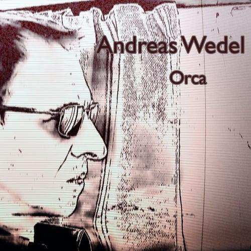 Orca von Andreas Wedel