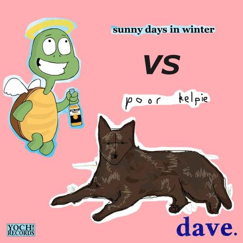 Sunny Days in Winter vs. Poor Kelpie von Dave