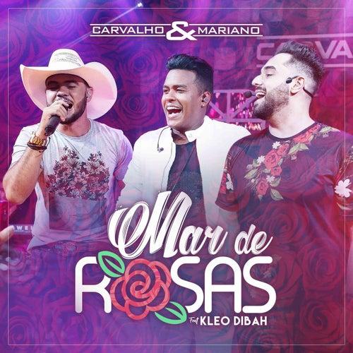 Mar De Rosas de Carvalho & Mariano