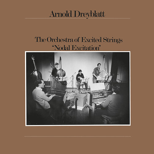 Nodal Excitation by Arnold Dreyblatt