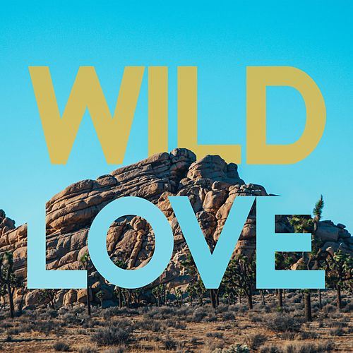 Wild Love by Tate Kirgiss