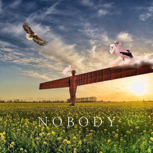 노바디 Nobody by Pig
