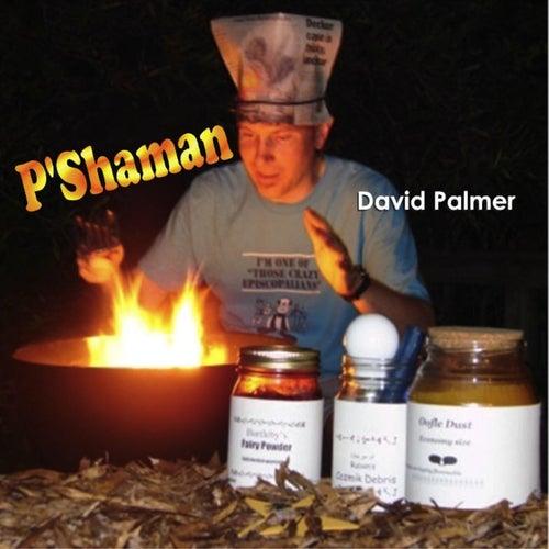 P'shaman de David Palmer