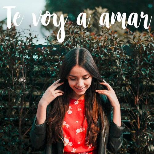 Te voy a amar de Laura Naranjo