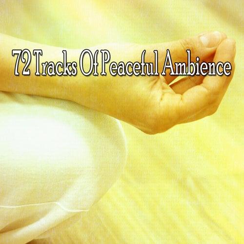 72 Tracks Of Peaceful Ambience de Meditación Música Ambiente