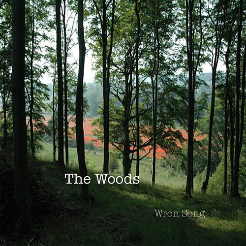 Wren Song - Single by The Woods