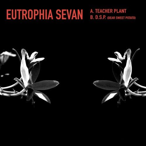 Eutrophia Sevan von Kyle Hall