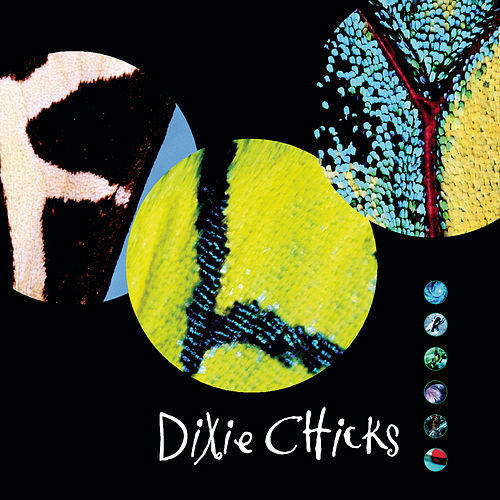 Fly von Dixie Chicks