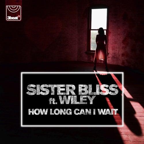 How Long Can I Wait de Sister Bliss