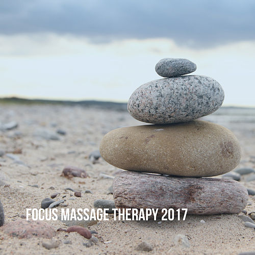 Focus: Massage Therapy 2017 by Various Artists