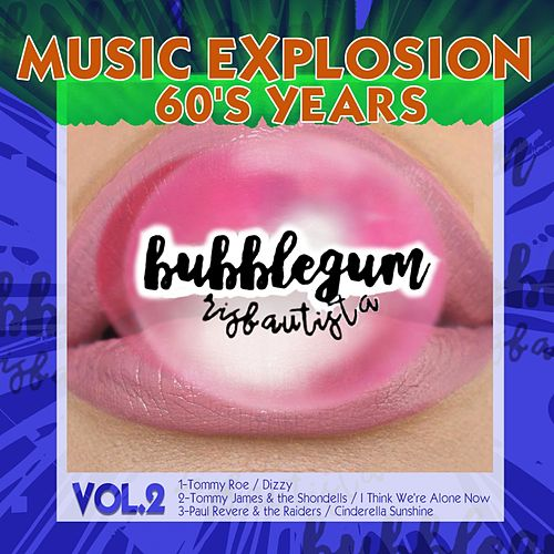 Bubblegum Music Explosion, Vol. 2 by Various Artists