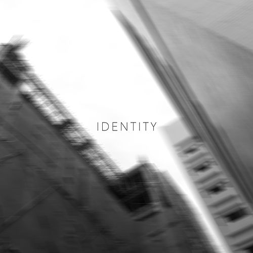 Identity 2 by Various Artists