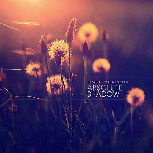 Absolute Shadow by Simon Wilkinson