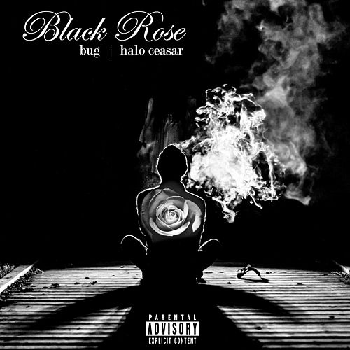 Black Rose von Bug