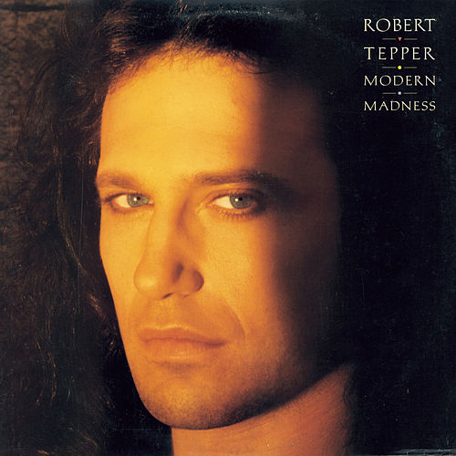 Modern Madness by Robert Tepper