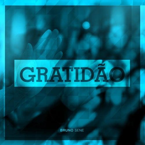 Gratidão de Bruno Sene