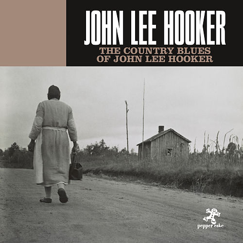 The Country Blues Of John Lee Hooker de John Lee Hooker