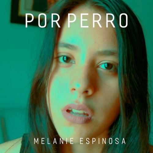 Por Perro van Melanie Espinosa