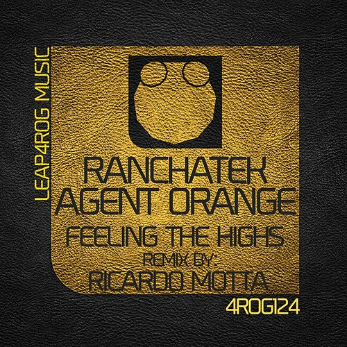 Feeling The Highs by Agent Orange