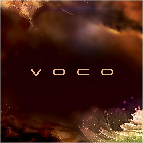 Voco by Bassic