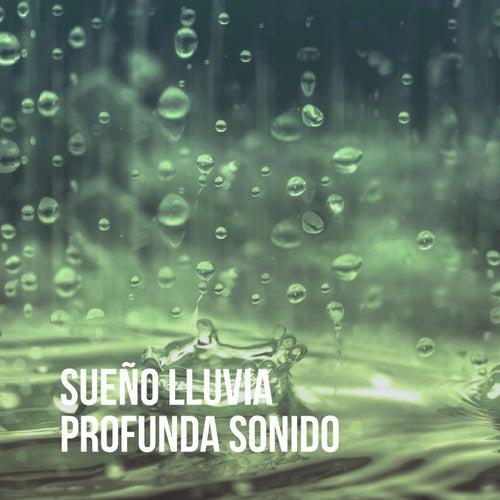 Sueño Lluvia Profunda Sonido by Various Artists