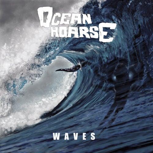 Waves von Oceanhoarse
