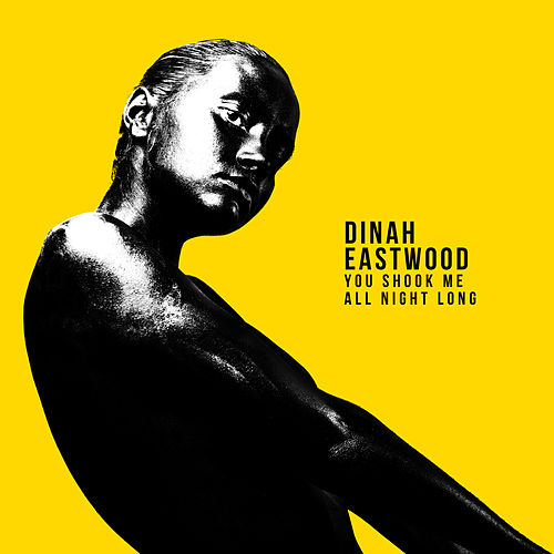 You Shook Me All Night Long by Dinah Eastwood