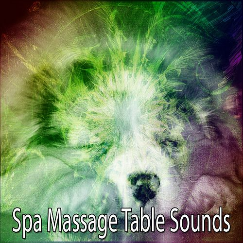 Spa Massage Table Sounds von Best Relaxing SPA Music