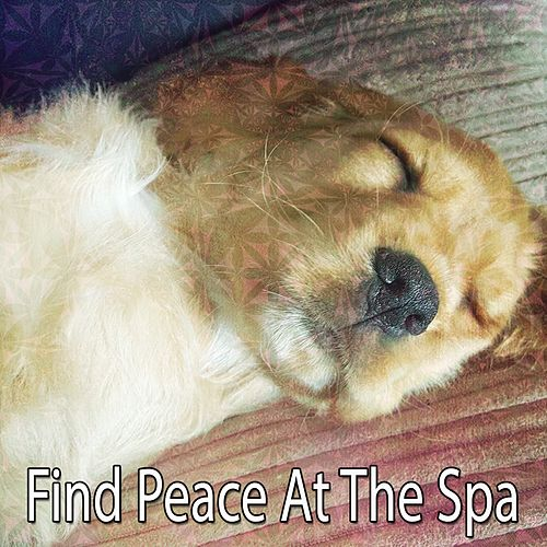 Find Peace At The Spa von Best Relaxing SPA Music