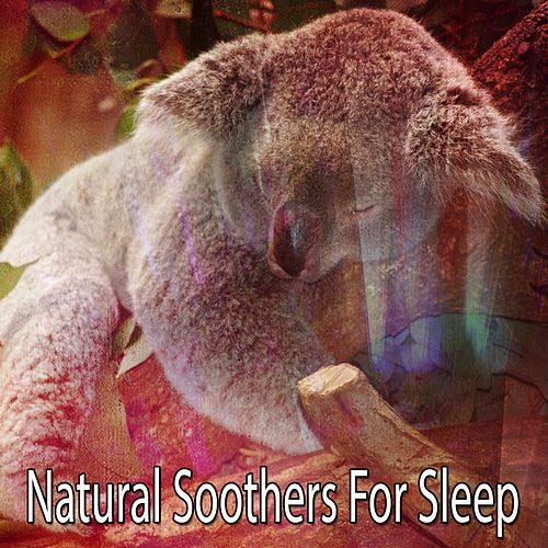 Natural Soothers For Sleep by White Noise Baby Sleep (1)