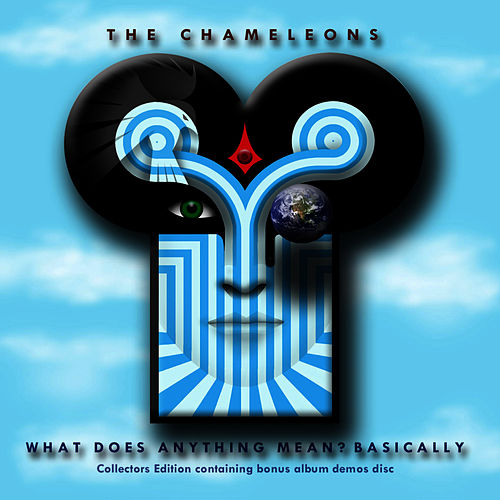 What Does Anything Mean?  Basically (2009 Remaster) von The Chameleons