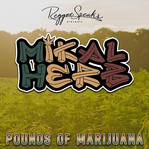 Pounds of Marijuana by Mikal Herb