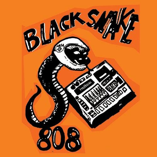 Bs808 de Black Snake 808