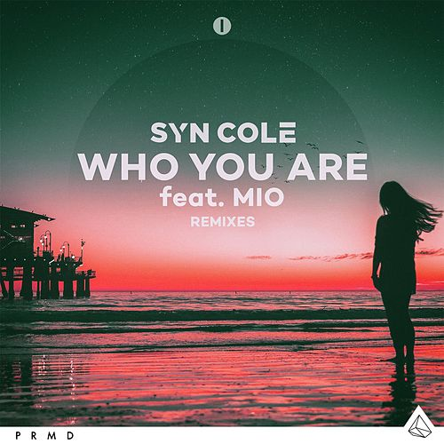 Who You Are (feat. MIO) (Remixes) von Syn Cole