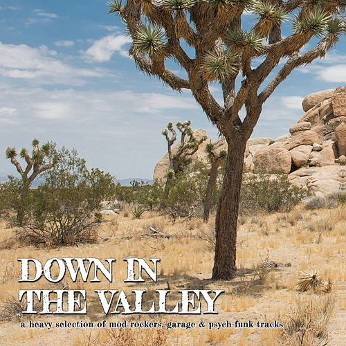 Down in the Valley by Various Artists
