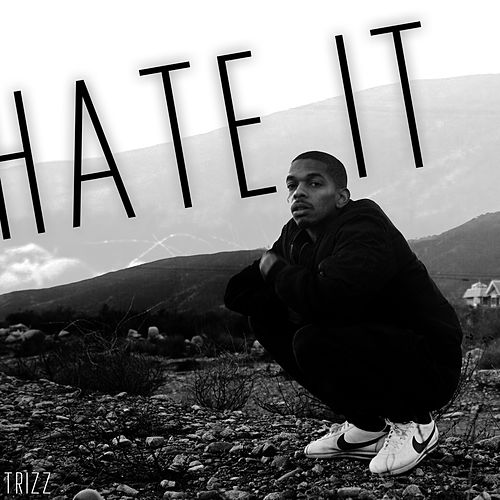 Hate It by Trizz
