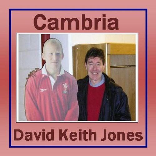 Cambria de David Keith Jones