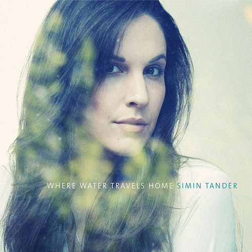 Where Water Travels Home von Simin Tander