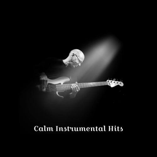 Calm Instrumental Hits de Acoustic Hits