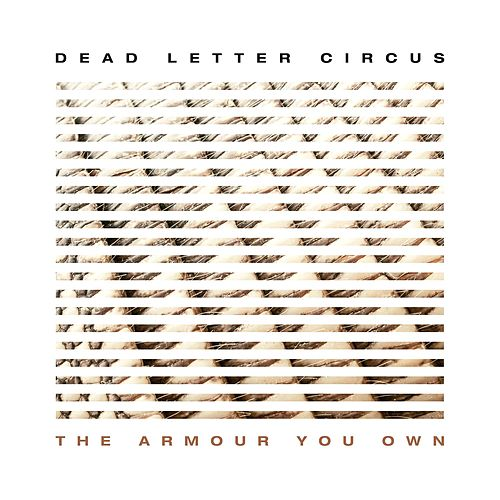 The Armour You Own di Dead Letter Circus