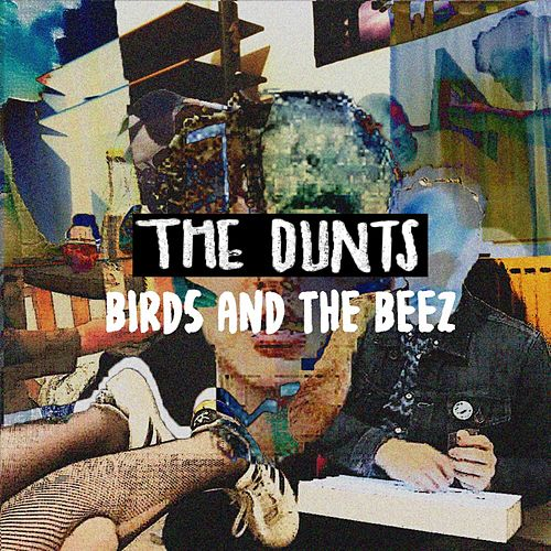 Birds and the Beez by The Dunts