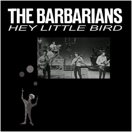 Hey Little Bird von The Barbarians