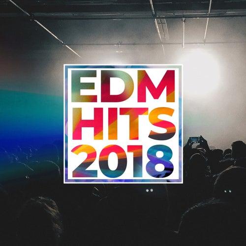 Edm Hits 2018 de Various Artists